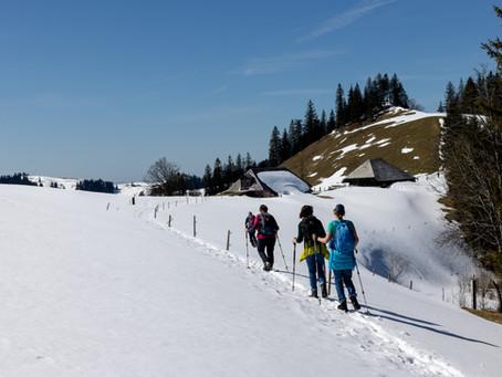 Alpenpanoramaweg Teil 6 Malters - Lüderenalp
