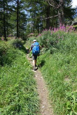 Aufstieg zur Simplon Passhöhe