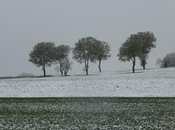 Wintereinbruch bei Bonfol (JU)