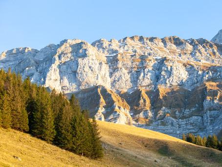Alpenpanoramaweg Teil 2 Appenzell - Stein