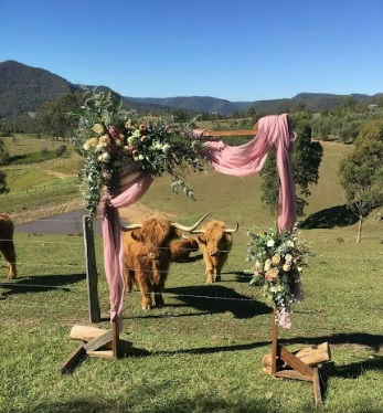 Wedding Venue Hunter Valley - Lonely Goat Olives