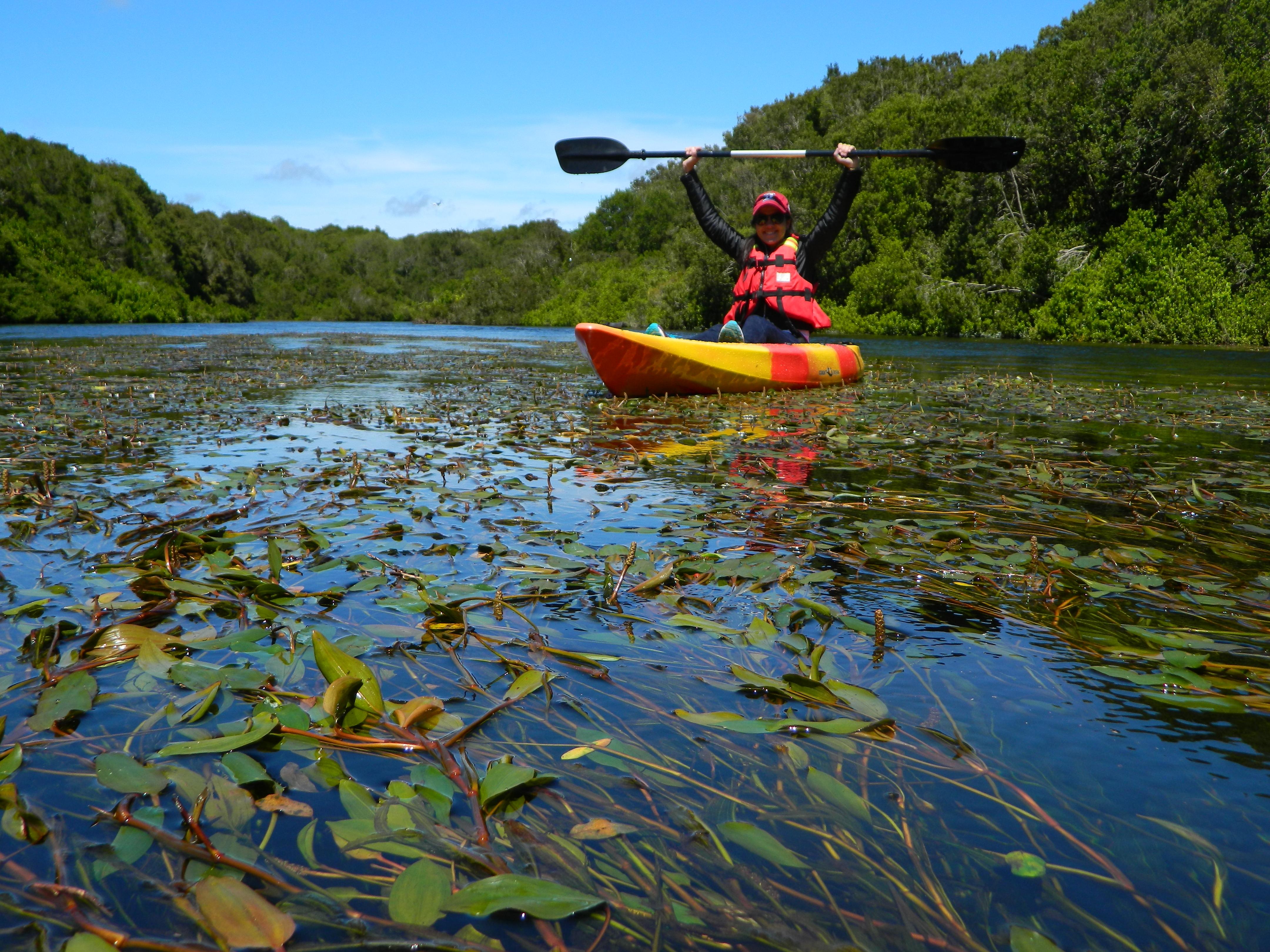 Kayaks Sendero del Chucao