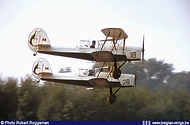 """""""Les Manchots"""" in single seat configuration Stampe Vertongen SV-4B V-18 and V-28 during a display."""