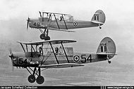 Stampe Vertongen SV-4B V-54 in formation flight with V-49.
