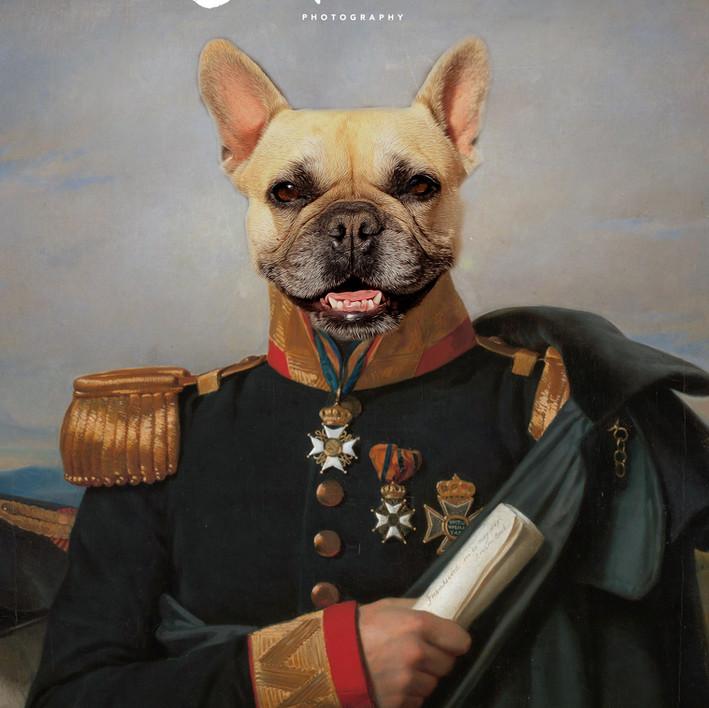 Commander Piggy 1844