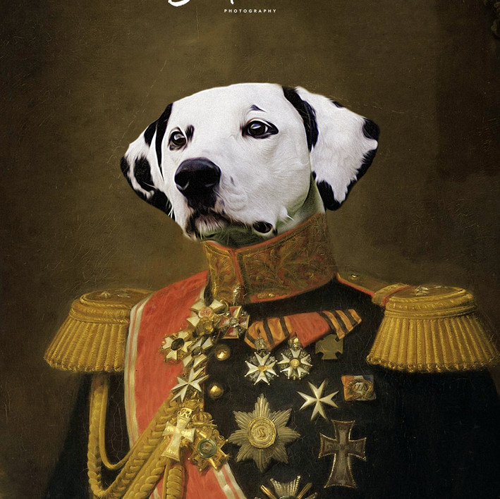 General Archie 1802