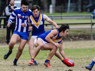 Match Reports: Round 11 vs Ferntree Gully