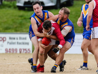 Match Reports: Round 15 vs Templestowe