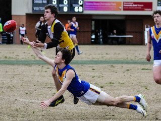 Match Reports: Round 16 vs Chirnside Park