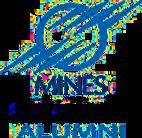 logo-mines-paris.png