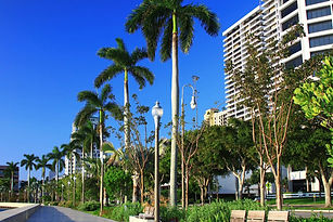 in-west-palm-beach.jpg