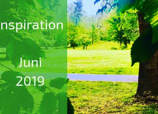 Inspiration, Meditation & Journal Fragen zum Thema Struktur: Day of Silence (02.06.2019)