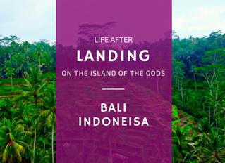Bali: Chaos - Stille - Neuorientierung