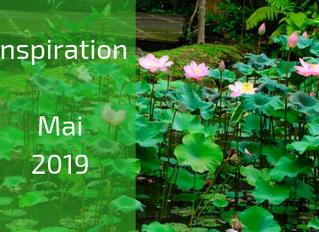 Inspiration, Meditation & Journal Fragen zum Thema Intuition: Day of Silence (05.05.2019)