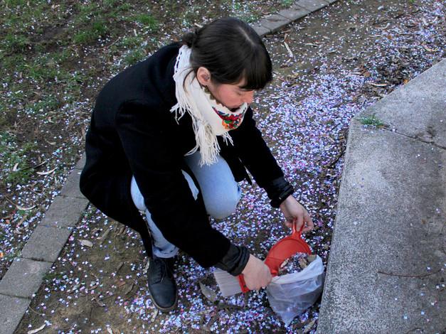 Cueillette de confettis.  Crédit photo : Vicky Doucet