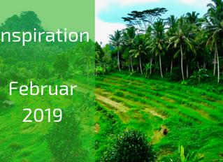 Inspiration, Meditation und Journal Fragen: Day of Silence am 03.02.2019