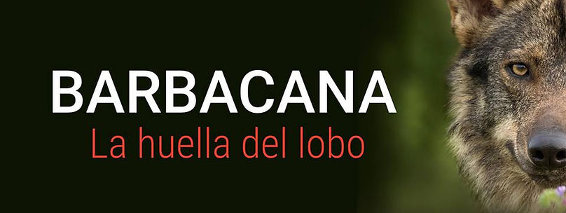 Banner Barbacan.jpg