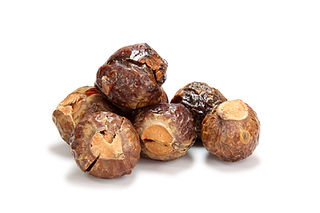 Soap Nuts from internet.jpg