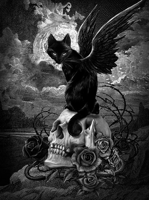Alchemy Official 'Nine Lives Of Poe' Postcard 3D Lenticular