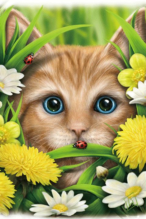 Summer Cat Postcard - SheBlackDragon 3D Lenticular