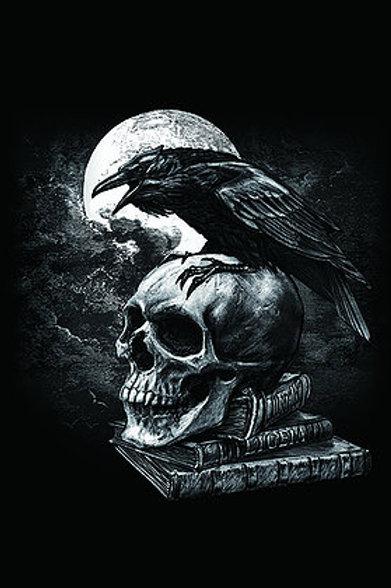 Poe's Raven Postcard - Alchemy 3D Lenticular