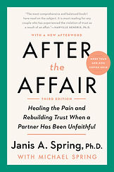 aftertheaffair pb c.jpg