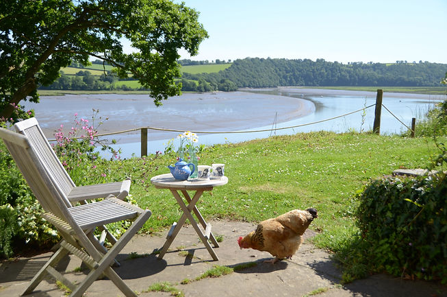 The view of the river from the cottage