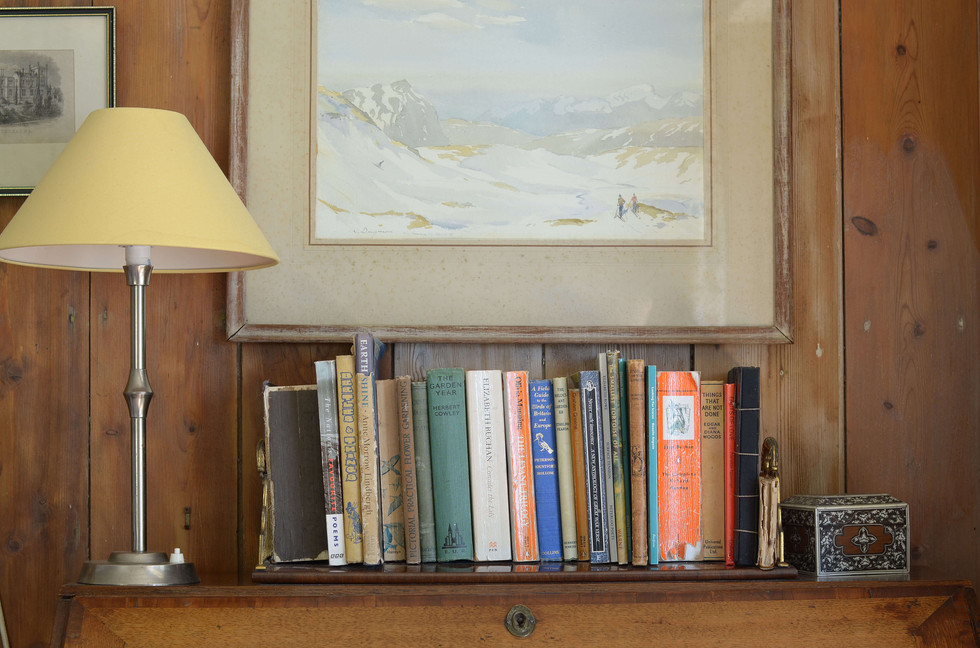 Books in the living room
