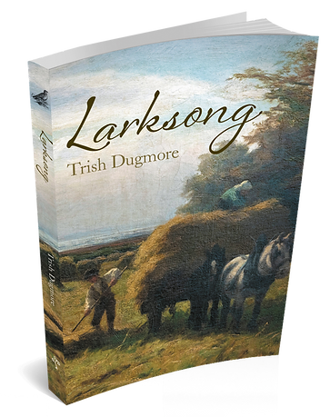 Larksong, a novel by Trish Dugmore