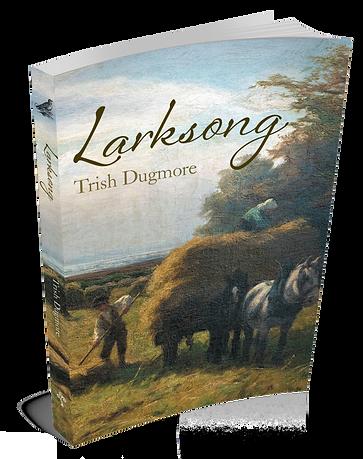 Larksong, a novel by Trish Dugmore