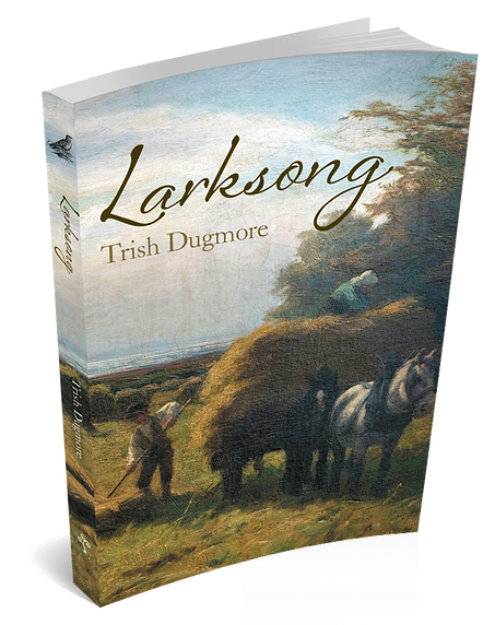 Larksong Cover.png