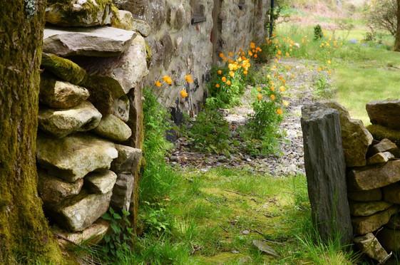 Mountain_Cottage_Garden_2.jpg