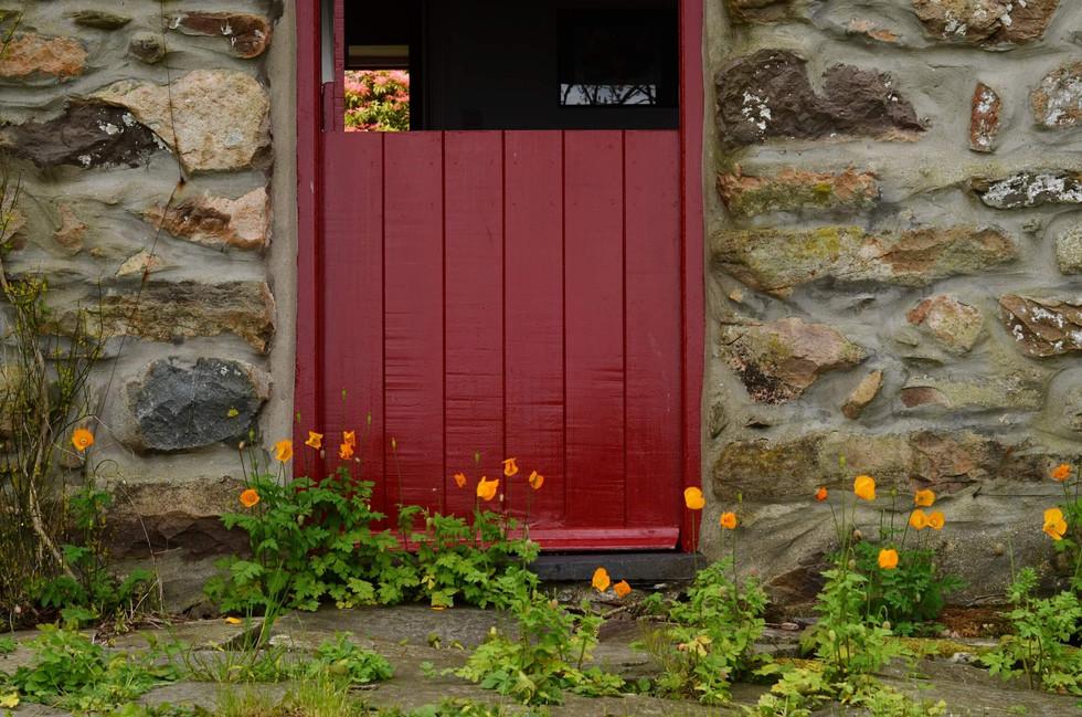 Mountain_Cottage_Exterior_4.jpg
