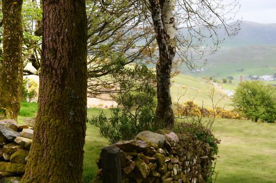 Mountain_Cottage_Garden_3.jpg