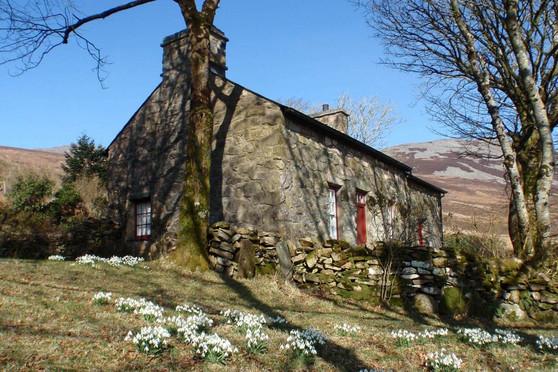 Mountain_Cottage_Exterior_5.jpg
