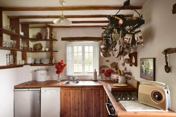 Mountain_Cottage_Kitchen_1.jpg