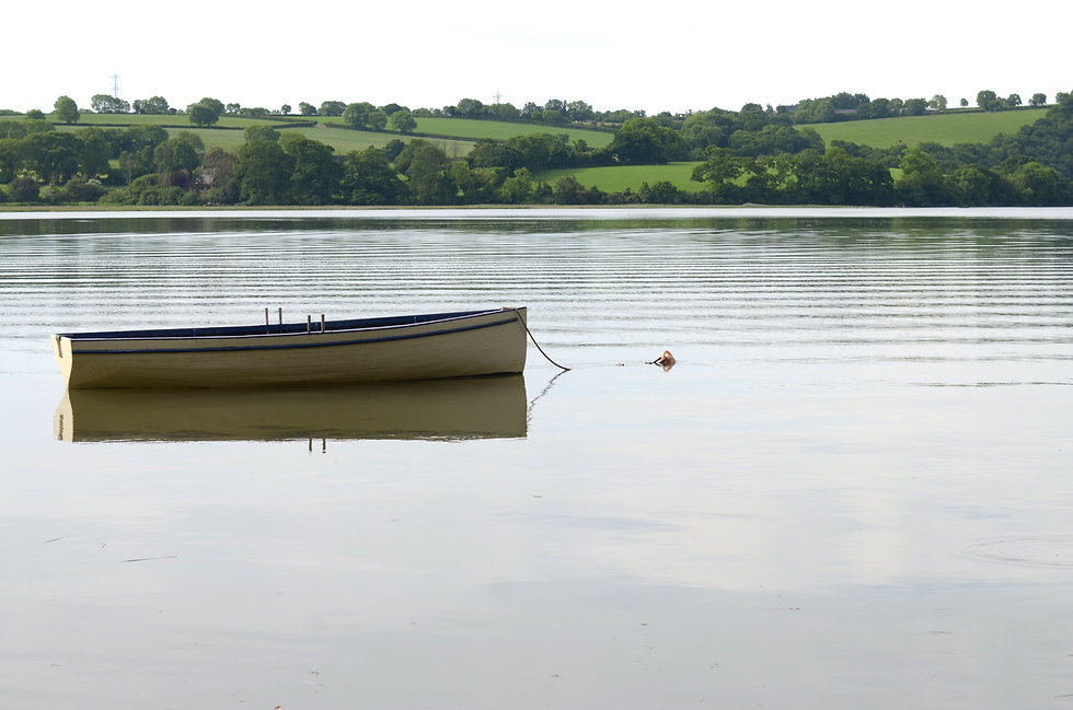 Flotsum the rowing boat on the River Tamar at high tide