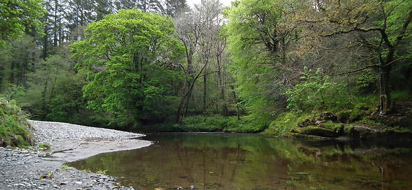 The river at Denim Bridge in Devon between the Tamar Valley and Dartmoor
