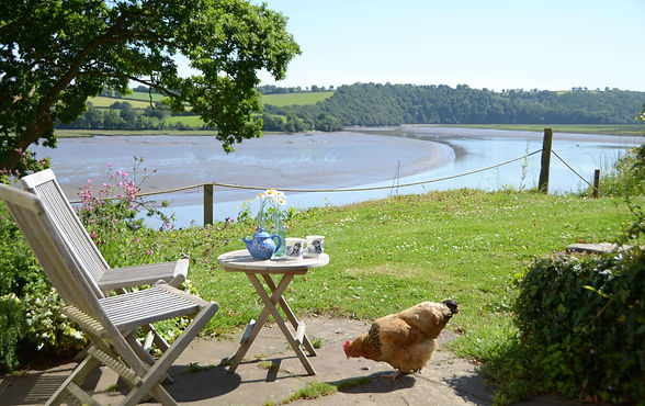 The view of the River Tamar from the cottage's terrace