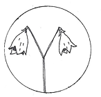 circle pen drawing.png