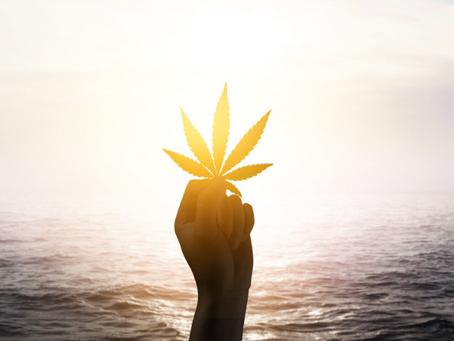 5 Marijuana-Friendly Vacation Destinations You Have to Visit