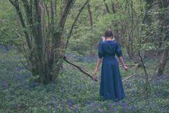 Bluebells-Wood.jpg