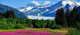 AlaskaGallery_MendenhalL2015.jpg