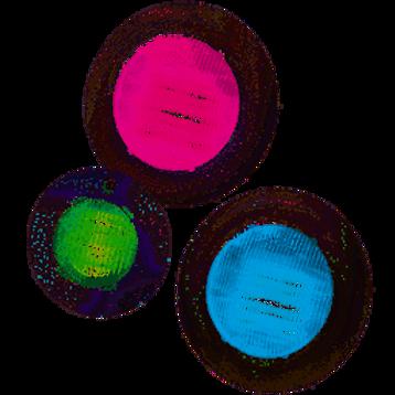 Hayward Universal ColorLogic One Large, 12 Volt, 100 ft, Colour Light Kit
