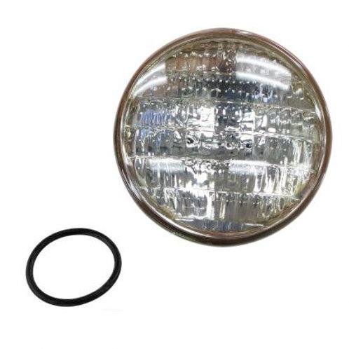 Aqua Lamp Bulb Replacement 12V 60W