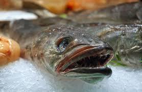 pescaderia ZAMPA