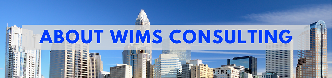 About WIMS Consulting.png