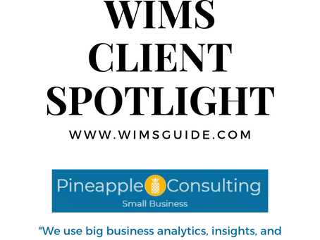 WIMS Client Spotlight: Pineapple Consulting