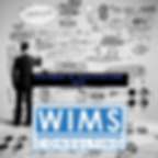 WIMS Consulting Statement of Qualificati