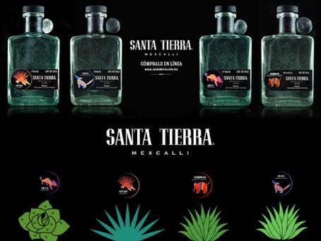 WIMS Client Spotlight: Santa Tierra Mezcal
